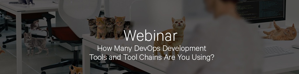 Webinar - Managing Your DevOps Tool Chest: The Complexity of Herding Kittens