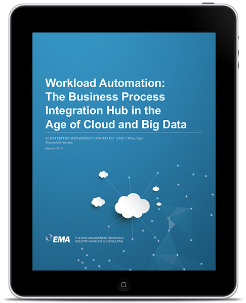 The Business Process Integration Hub in the Age of Cloud and Big Data