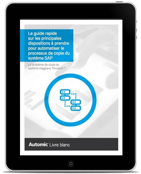automated-sap-systems-fr.jpg